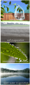 evaporation_components